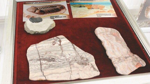 2,4 milyar yıllık fosile yoğun ilgi
