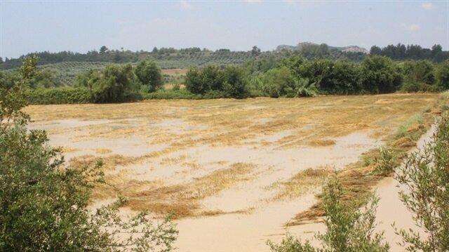 Antalya'da tarım arazileri sular altında kaldı-Antalya hava durumu