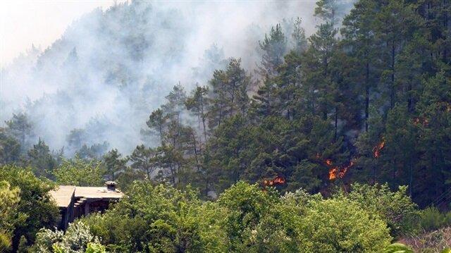 Anamur'daki orman yangını
