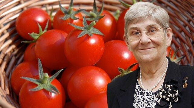 Canan Hoca şimdi de domatese taktı