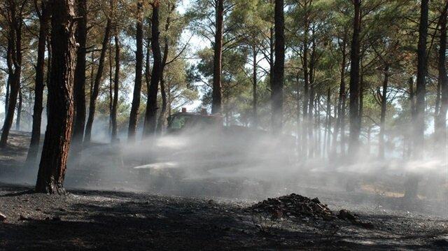 Hatay Yerel Haber: Kırıkhan ilçesinde çıkan yangında 1,5 hektarlık alan zarar gördü.