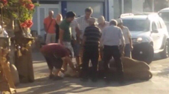 Muğla'da inek sıcaktan yere yığıldı