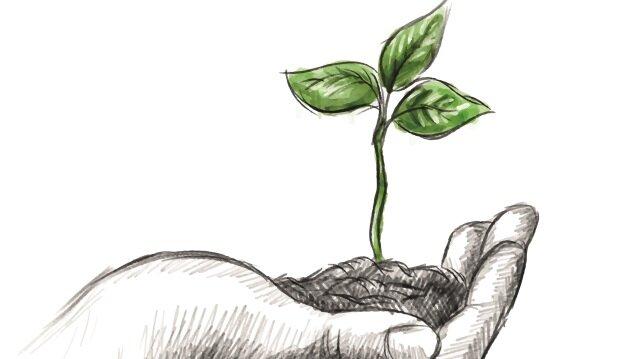 Tarım sigortasında hızlı büyüme devam ediyor