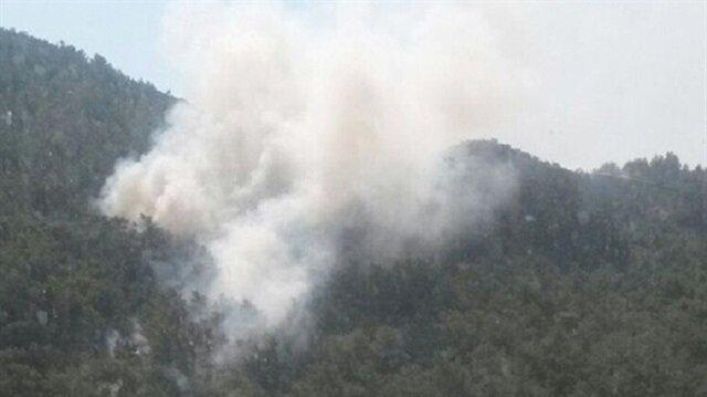 Muğla'daki yangında 10 dönümlük alan zarar gördü
