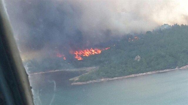 Ayvalık orman yangını çıktı.