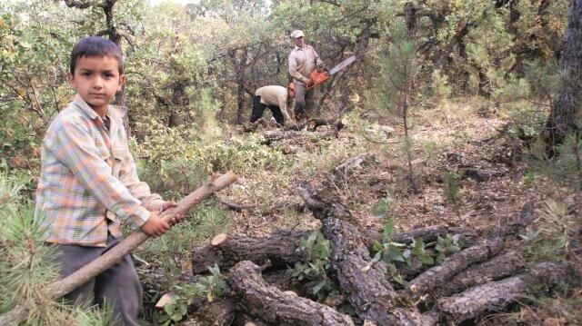 Orman köylülerine 4 milyonluk destek