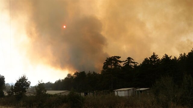 Bolu'daki orman yangını havadan görüntülendi