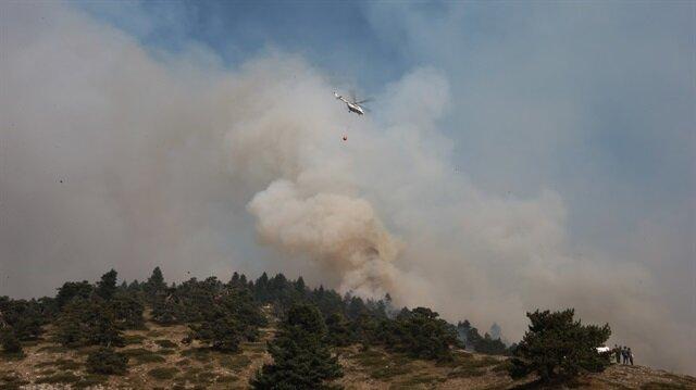 Kütahya'da kontrol altına alınan orman yangını tekrar başladı