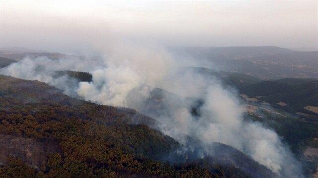 Sakarya'da 25 hektar alan kül oldu
