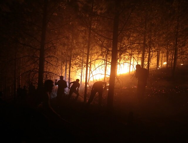 Kütahya'da çıkan orman yangını Bilecik'e sıçradı