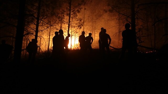 Kütahya'da çıkan yangın Bilecik'e de sıçradı: Söndürme çalışmaları tüm hızıyla sürüyor.