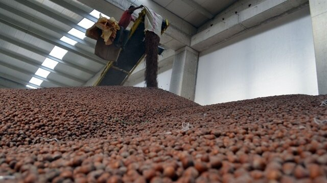 Bugüne kadar 25 bin üreticiden 60 bin ton fındık randevusu alındı.