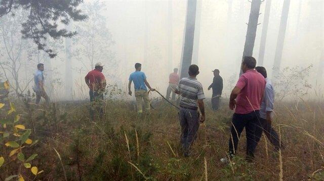 Kars'ta orman yangınında 2 hektarlık alan zarar gördü