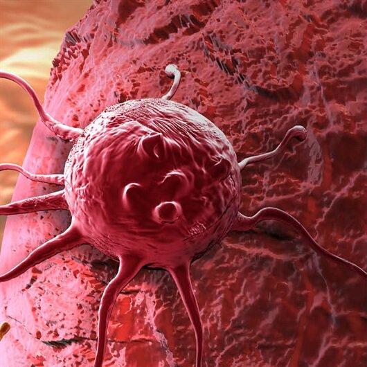 Türk bilim adamlarından kanseri önleyen ve yaşamı uzatan ilaç
