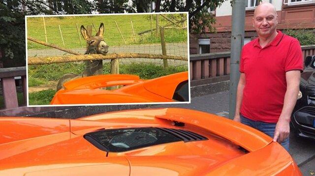 Eşeğin McLaren'ı havuç sanması 30 bin sterlinlik zarara yol açtı.
