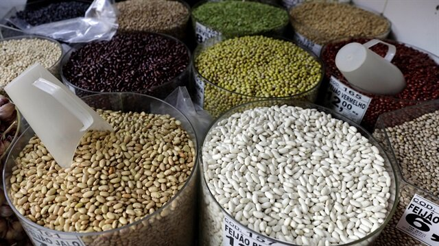 Different types of beans and grains are displayed in a store