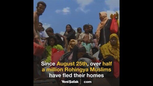 Miserable Rohingya Muslims' struggle for survival at Bangladesh camps
