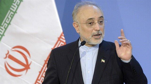 İran Atom Enerjisi Kurumu Başkanı Salihi