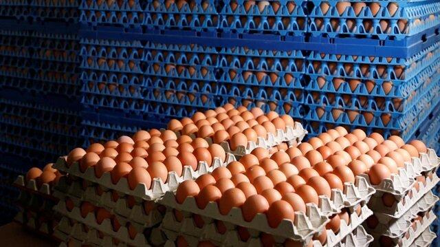 Tavuk yumurtası üretimi 1,6 milyar adet olarak gerçekleşti.