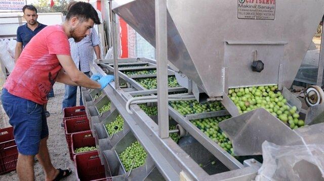 Genç girişimci 55 bin liraya aldığı iki makineyle tesis kurdu.