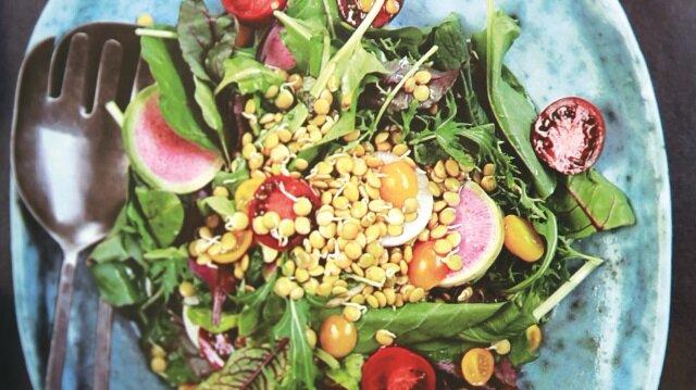 Pelin. Faydalı özellikleri ve üzerine dayalı yemek tarifleri