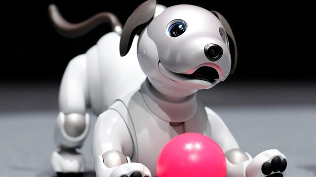 """Sony Corp's entertainment robot """"aibo"""" is pictured at its demonstration in Tokyo, Japan"""