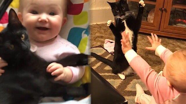 'Bebeklerle kediler birlikte büyümeli' dedirten görüntüler