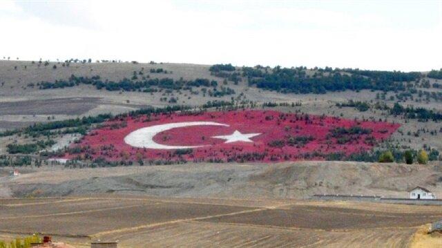 20 bin taş kullanılarak oluşturulan Türk bayrağı.