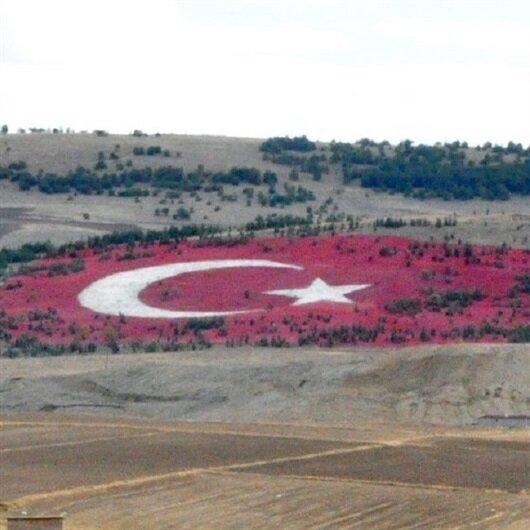 20 bin ton taş kullanılarak Türk bayrağı yapıldı