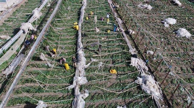 Antalya'daki hortumun faturası 10 milyon TL'yi aşacak
