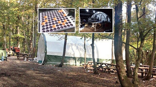 İstanbul polisinden şoke eden baskın: Ormandaki çadırdan çıktılar