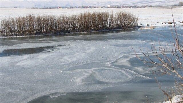 Ardahan'da etkili olan soğuk hava yaşamı olumsuz etkiledi.