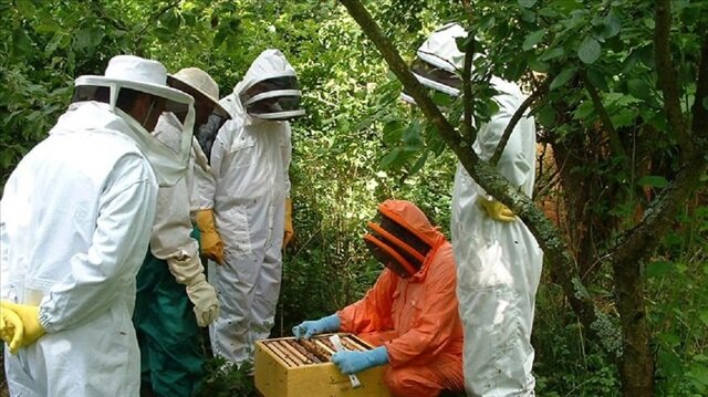 Turkish agency trains women beekeepers in Pakistan