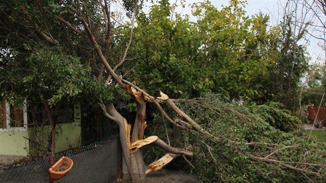Hatay'da meydana gelen fırtınada, hayvanlar telef oldu, çatılar uçtu, elektrik telleri koptu, arabalar zarar gördü.