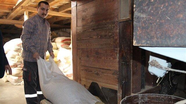 'Meşhur Tosya Pirinci'nin lezzeti Ilgaz'ın karından geliyor.