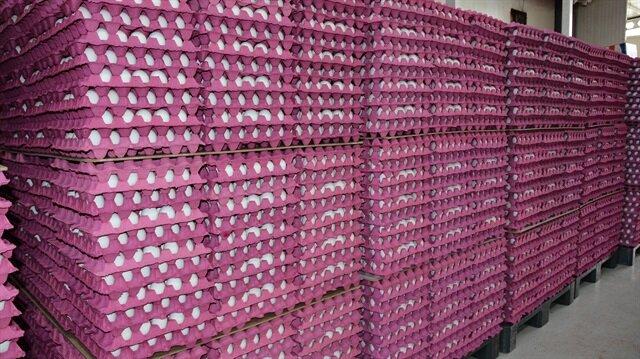 'Yumurtada yılın en yüksek fiyatı' üreticiyi sevindirdi.