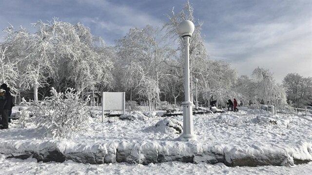 Niagara Şelalesi'nin aşırı soğuğun etkisiyle buz ve karla kaplanması muhteşem manzaralar oluşturdu.