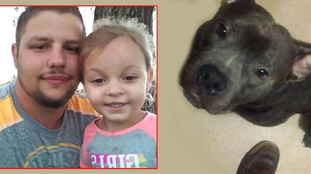 Henüz 3 gün önce alınan pitbull küçük kızın ölümüne neden oldu.