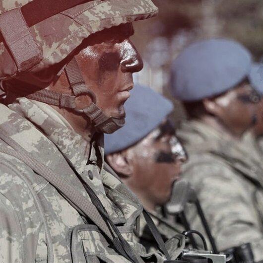 Mavi bereliler sınırda