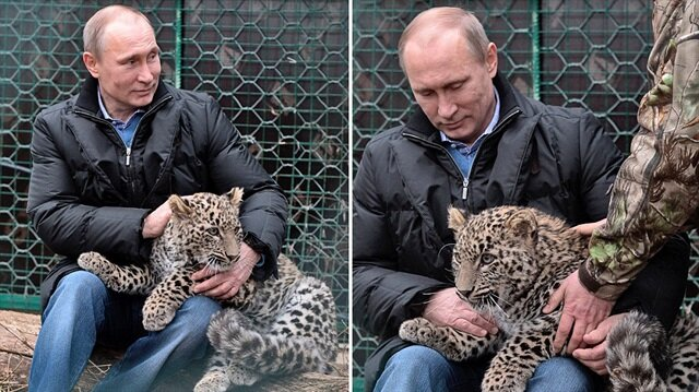 Leoparı ölü bulundu