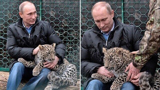 """العثور على """"فهد"""" الرئيس بوتين """"فكتوريا"""" ميتًا"""