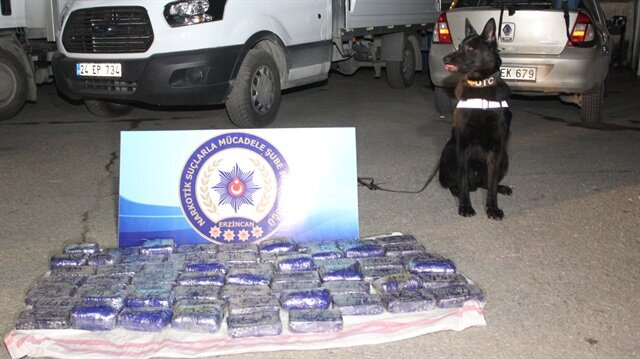 Narkotik dedektör köpeği 'Kurt'un tepki vermesi üzerine aracın 'zula' tabir edilen gizli bölmesindeki 60 pakette 31 kilo 308 gram eroin ele geçirildi.