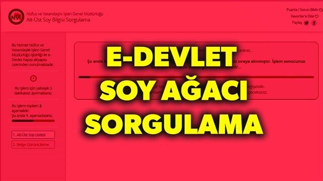 T.C. kimlik numarası e-devlet şifresiyle e-devlet (turkiye.gov.tr) giriş yapabilirsiniz.