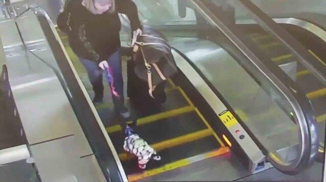 Yürüyen merdivene sıkışan köpeği son anda kurtardılar