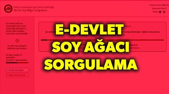 Alt üst Soy Ağacı öğren Turkiyegovtr E Devlet Giriş Ve Soy Ağacı