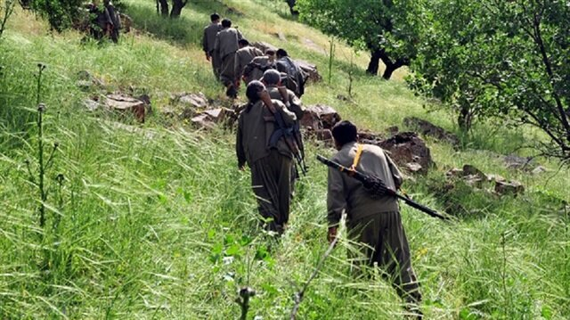 1780 terrorists 'neutralized' in Turkey's Operation Olive Branch