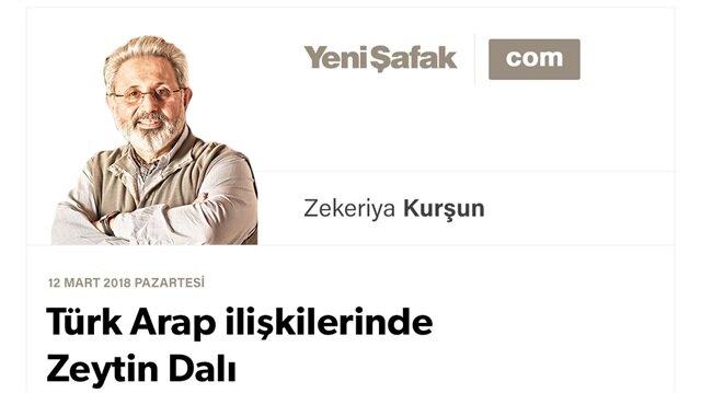 Türk Arap ilişkilerinde Zeytin Dalı