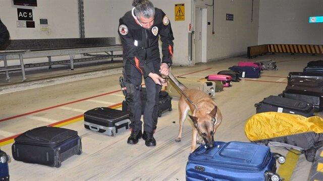 Narkotik köpeği 11 milyon liralık uyuşturucuyu yakalattı