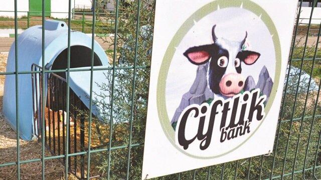 Çiftlik Bank soruşturması genişliyor.