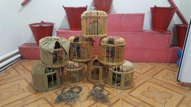 Kaçak olarak avlanan 5 keklik ele geçirildi.